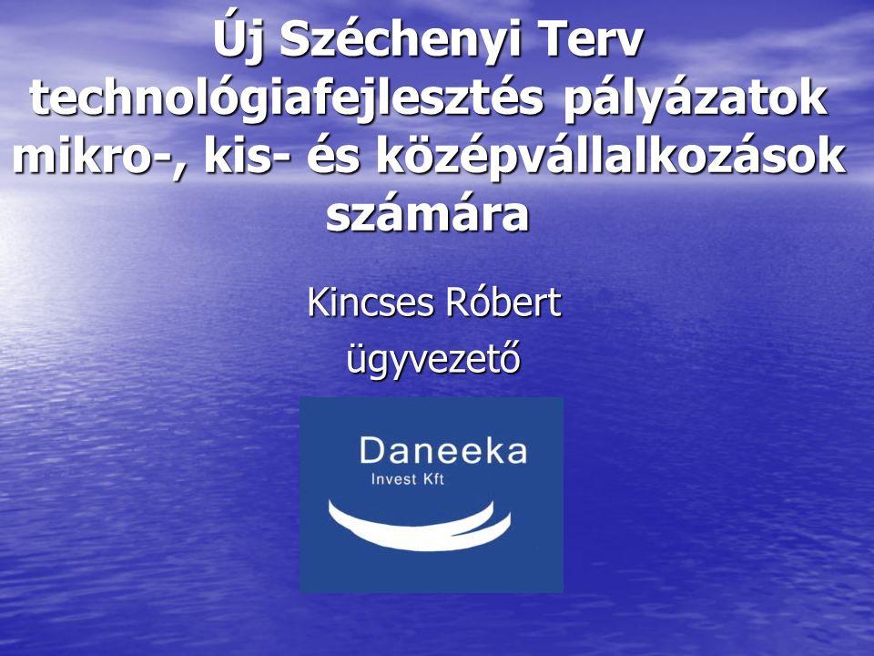 DANEEKA12 Köszönöm figyelmüket.Kincses Róbert DANEEKA Invest Kft.
