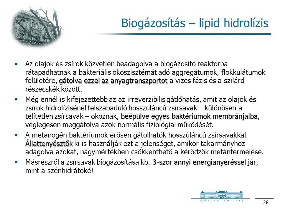 Biogázosítás – lipid hidrolízis gátolva ezzel az anyagtranszportot  Az olajok és zsírok közvetlen beadagolva a biogázosító reaktorba rátapadhatnak a bakteriális ökoszisztémát adó aggregátumok, flokkulátumok felületére, gátolva ezzel az anyagtranszportot a vizes fázis és a szilárd részecskék között.