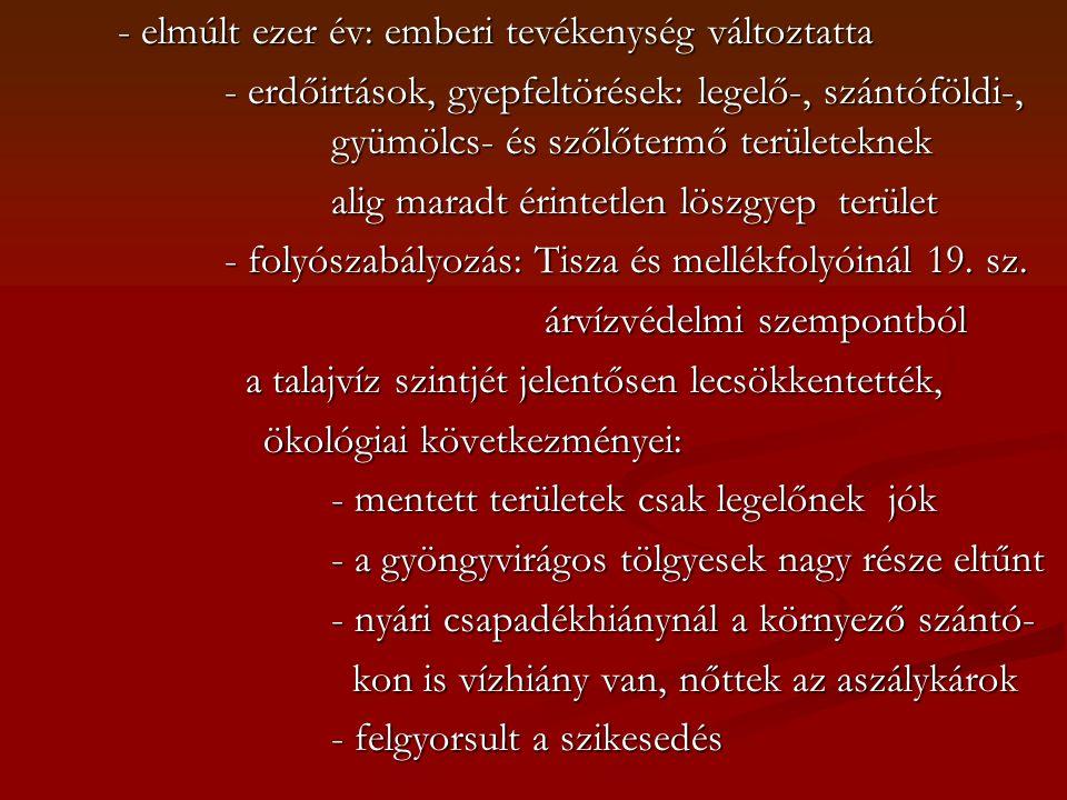 - elmúlt ezer év: emberi tevékenység változtatta - erdőirtások, gyepfeltörések: legelő-, szántóföldi-, gyümölcs- és szőlőtermő területeknek alig maradt érintetlen löszgyep terület - folyószabályozás: Tisza és mellékfolyóinál 19.