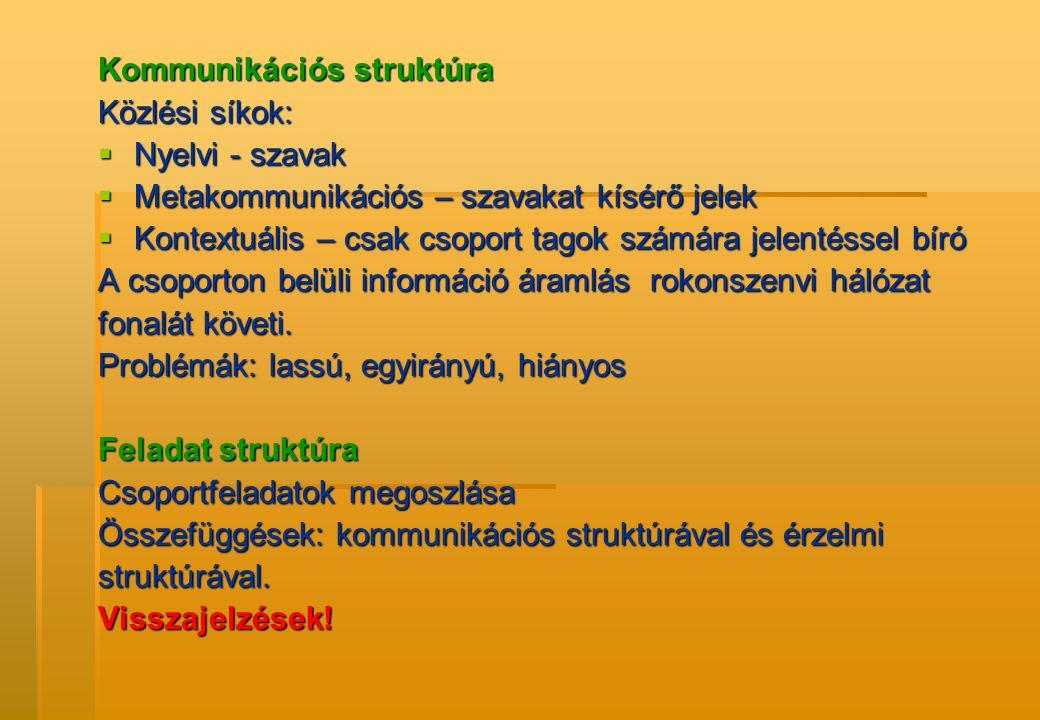 Kommunikációs struktúra Közlési síkok:  Nyelvi - szavak  Metakommunikációs – szavakat kísérő jelek  Kontextuális – csak csoport tagok számára jelen