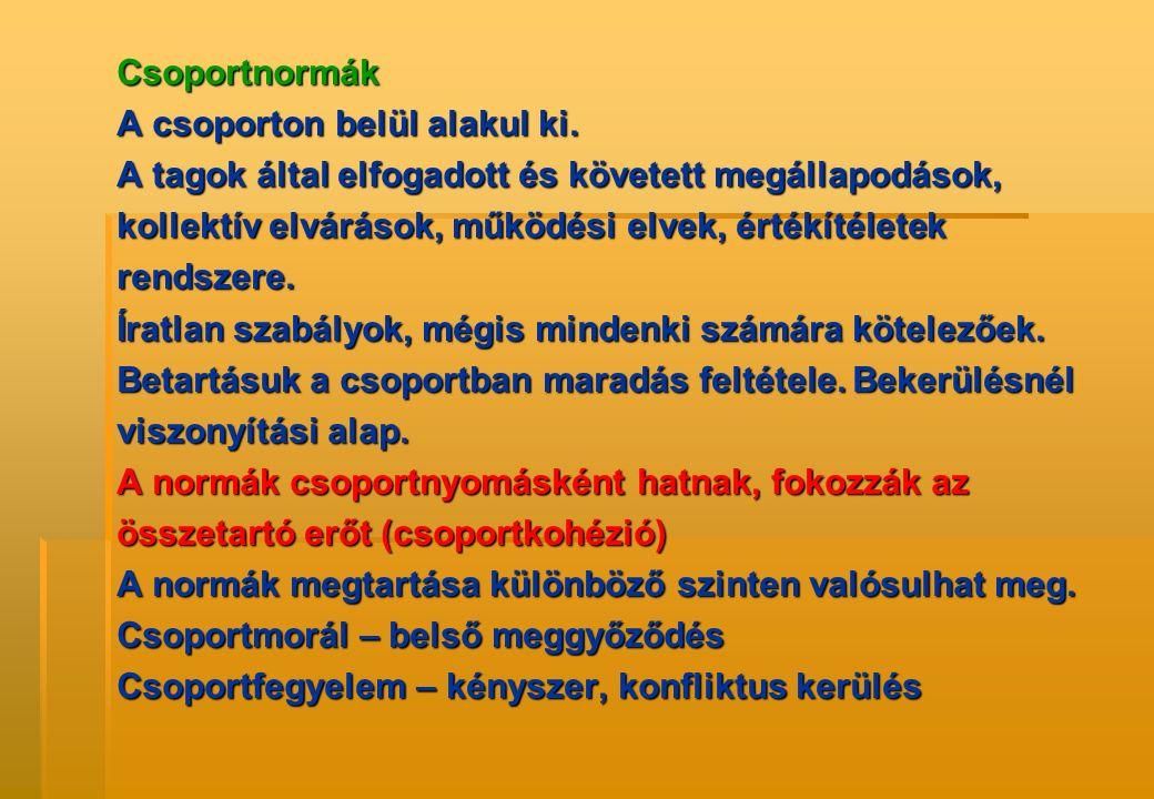 Csoportnormák A csoporton belül alakul ki. A tagok által elfogadott és követett megállapodások, kollektív elvárások, működési elvek, értékítéletek ren