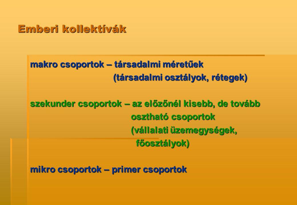 Emberi kollektívák makro csoportok – társadalmi méretűek (társadalmi osztályok, rétegek) (társadalmi osztályok, rétegek) szekunder csoportok – az előz