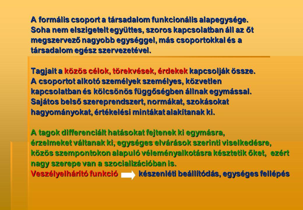 A formális csoport a társadalom funkcionális alapegysége. Soha nem elszigetelt együttes, szoros kapcsolatban áll az őt megszervező nagyobb egységgel,