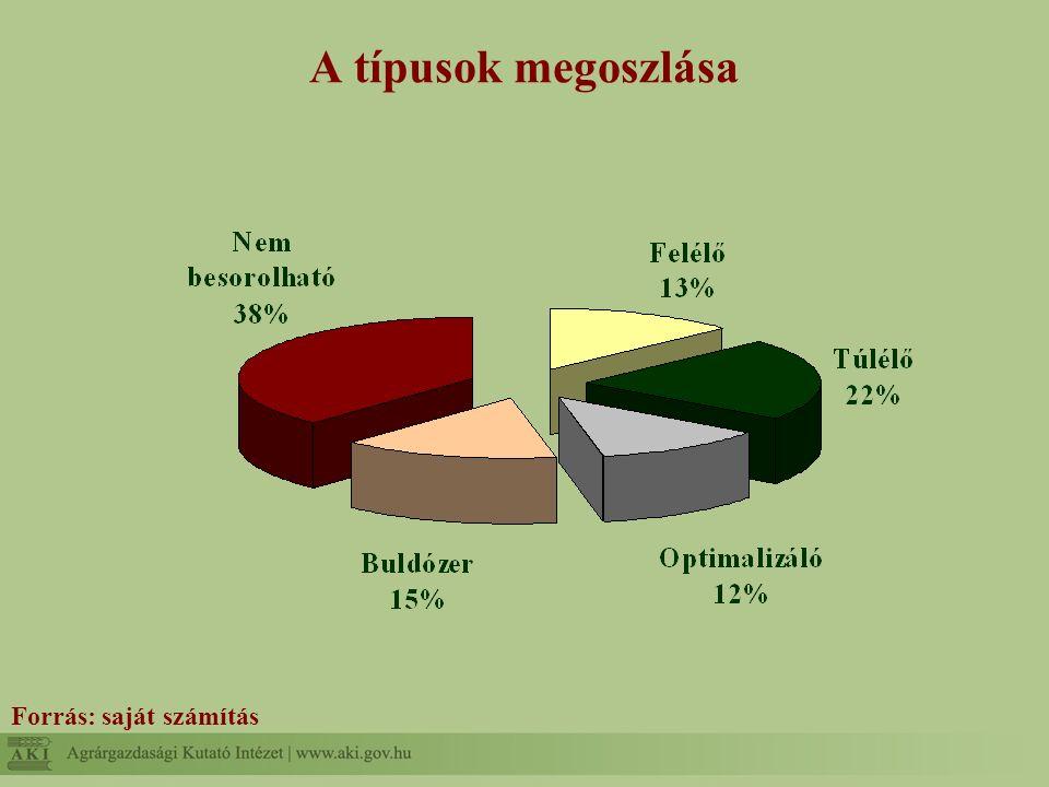 A típusok megoszlása Forrás: saját számítás