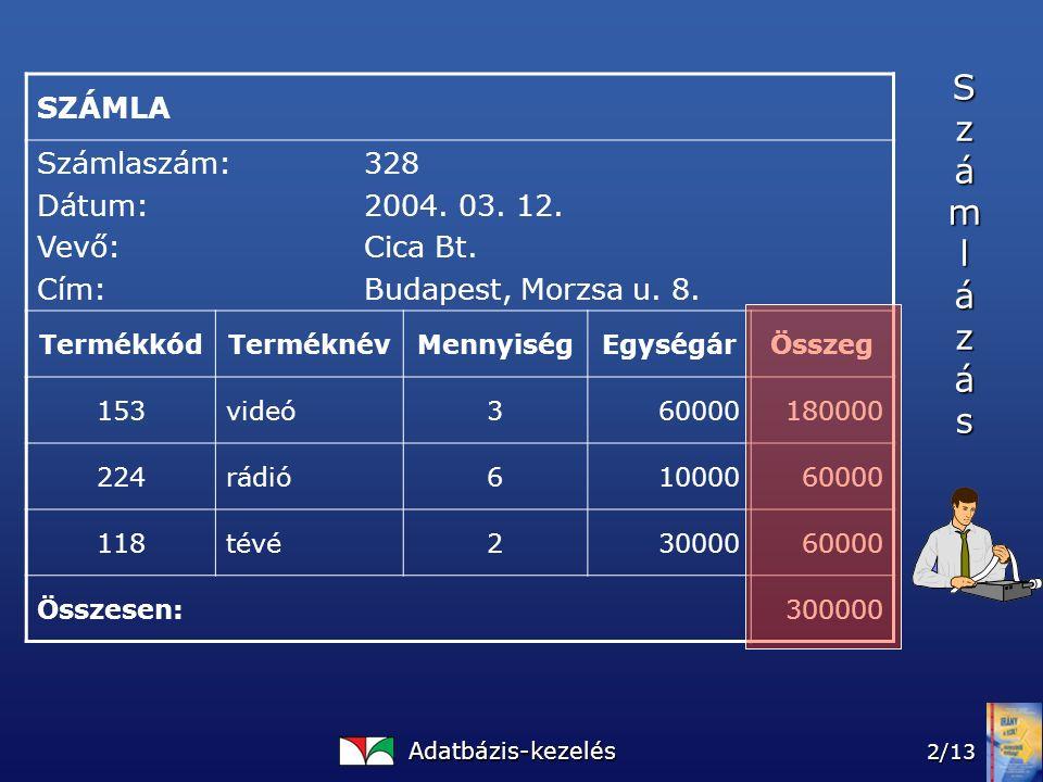 Adatbázis-kezelés 2/13 SZÁMLA Számlaszám:328 Dátum:2004.