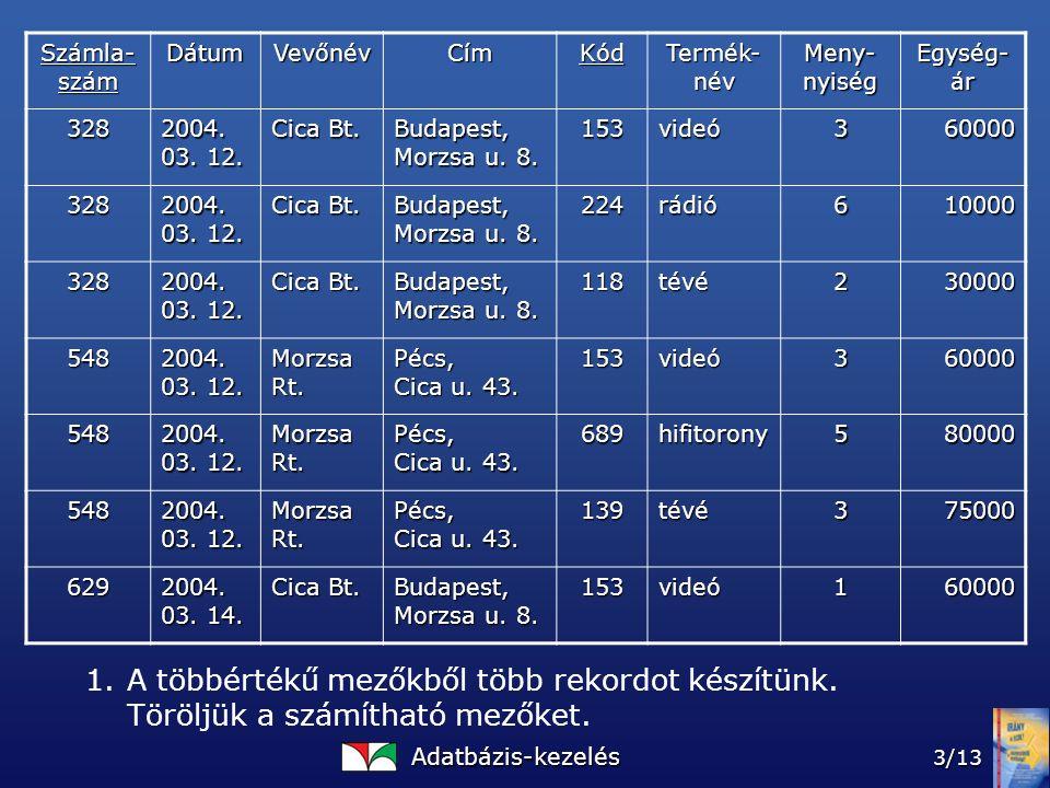 Adatbázis-kezelés 3/13 Számla- szám DátumVevőnévCímKód Termék- név Meny- nyiség Egység- ár 328 2004.
