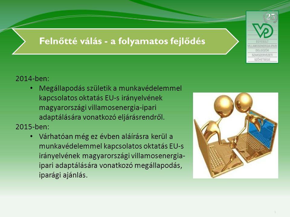 Felnőtté válás - a folyamatos fejlődés 2014-ben: Megállapodás születik a munkavédelemmel kapcsolatos oktatás EU-s irányelvének magyarországi villamosenergia-ipari adaptálására vonatkozó eljárásrendről.