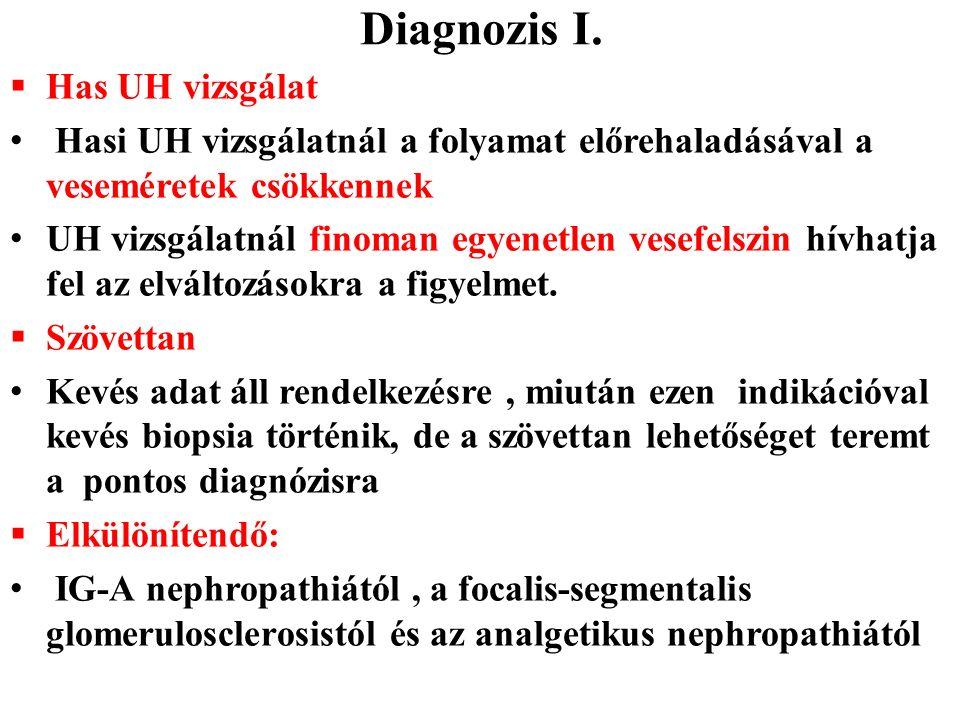 Diagnozis I.  Has UH vizsgálat Hasi UH vizsgálatnál a folyamat előrehaladásával a veseméretek csökkennek UH vizsgálatnál finoman egyenetlen vesefelsz