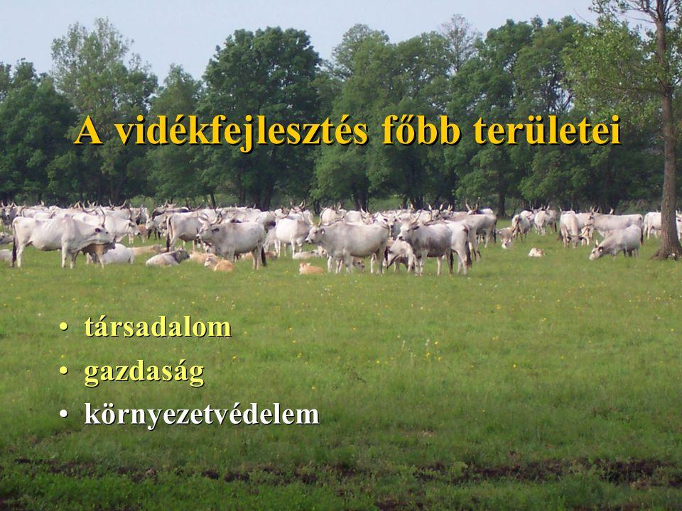 A vidékfejlesztés főbb területei társadalom gazdaság környezetvédelem társadalom gazdaság környezetvédelem