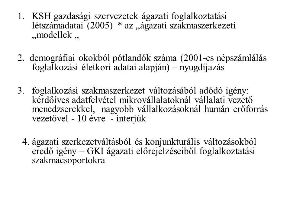 """1.KSH gazdasági szervezetek ágazati foglalkoztatási létszámadatai (2005) * az """"ágazati szakmaszerkezeti """"modellek """" 2."""