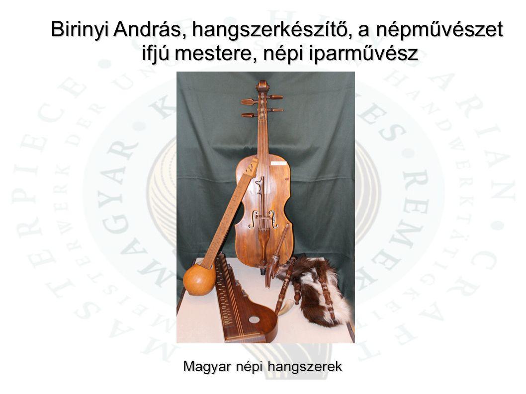 Birinyi András, hangszerkészítő, a népművészet ifjú mestere, népi iparművész ifjú mestere, népi iparművész Magyar népi hangszerek