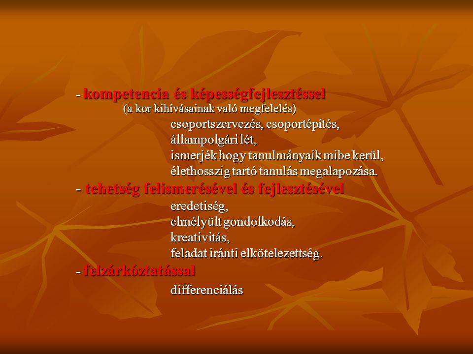 - kompetencia és képességfejlesztéssel (a kor kihívásainak való megfelelés) csoportszervezés, csoportépítés, állampolgári lét, ismerjék hogy tanulmány