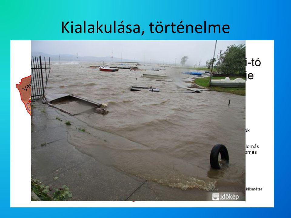 Kialakulása, történelme Fiatal tó, 12-15 ezer éves Árkos mélyedés Másfél évezred során tizennégyszer száradt ki, legutóbb 1863-1866 között Több alkalommal áradt: 1838 és 1963 (tavaszi áradások A tó szabályozása 1960-ban kezdődött