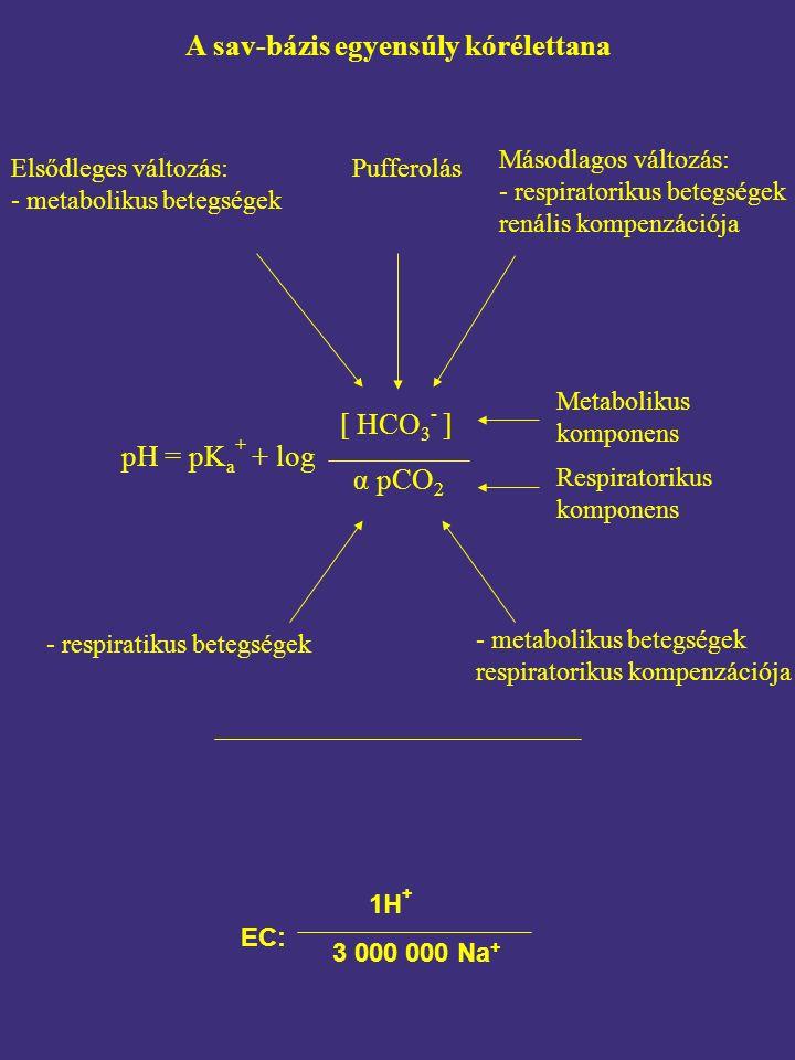 A sav-bázis egyensúly kórélettana - metabolikus betegségek respiratorikus kompenzációja Elsődleges változás: - metabolikus betegségek Pufferolás pH = pK a + + log [ HCO 3 - ] α pCO 2 Metabolikus komponens Respiratorikus komponens - respiratikus betegségek 1H + 3 000 000 Na + EC: Másodlagos változás: - respiratorikus betegségek renális kompenzációja