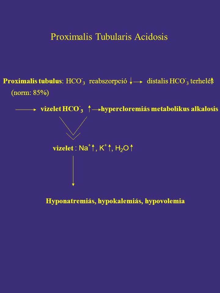 Proximalis Tubularis Acidosis Proximalis tubulus: HCO - 3 reabszorpció distalis HCO - 3 terhelés (norm: 85%) vizelet : Na +, K +, H 2 O Hyponatremiás, hypokalemiás, hypovolemia vizelet HCO - 3 hypercloremiás metabolikus alkalosis