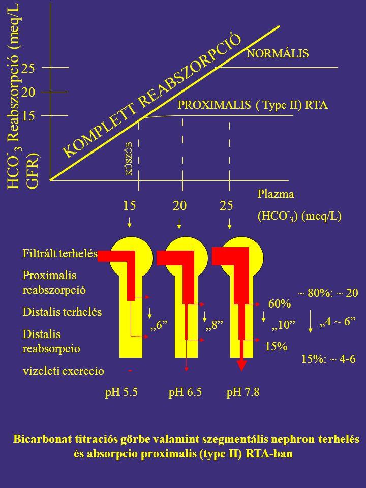 """KOMPLETT REABSZORPCIÓ NORMÁLIS PROXIMALIS ( Type II) RTA KÜSZÖB Plazma (HCO - 3 ) (meq/L) Filtrált terhelés Proximalis reabszorpció Distalis terhelés Distalis reabsorpcio vizeleti excrecio """"6 """"8 """"10 Bicarbonat titraciós görbe valamint szegmentális nephron terhelés és absorpcio proximalis (type II) RTA-ban HCO - 3 Reabszorpció (meq/L GFR) 15 20 25 152025 pH 5.5 pH 6.5 pH 7.8 60% 15% ~ 80%: ~ 20 15%: ~ 4-6 """"4 ~ 6 -"""