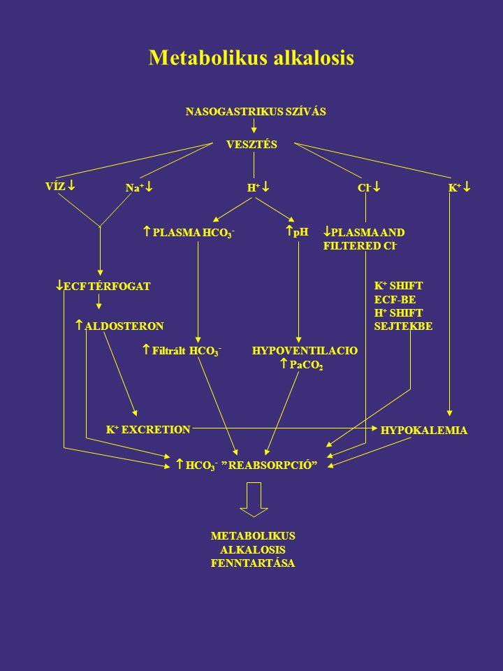 VÍZ  K +  NASOGASTRIKUS SZÍVÁS VESZTÉS H +   PLASMA HCO 3 -  pH Na +  Cl -   ECF TÉRFOGAT  PLASMA AND FILTERED Cl - K + SHIFT ECF-BE H + SHIFT SEJTEKBE HYPOKALEMIA  Filtrált HCO 3 - HYPOVENTILACIO  PaCO 2  ALDOSTERON K + EXCRETION  HCO 3 - REABSORPCIÓ METABOLIKUS ALKALOSIS FENNTARTÁSA Metabolikus alkalosis