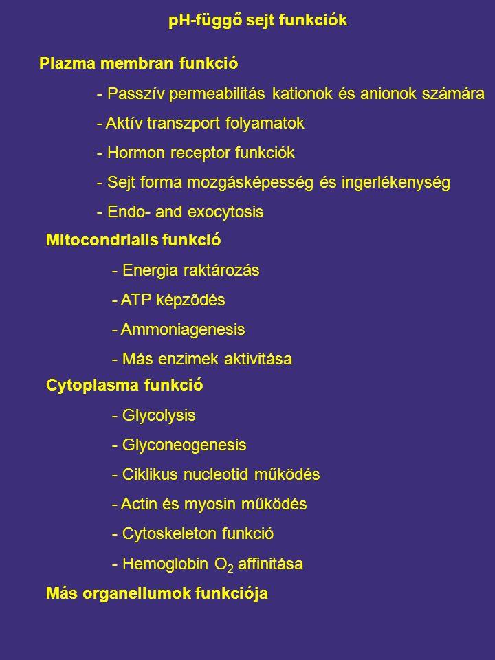 pH-függő sejt funkciók Plazma membran funkció - Passzív permeabilitás kationok és anionok számára - Aktív transzport folyamatok - Hormon receptor funkciók - Sejt forma mozgásképesség és ingerlékenység - Endo- and exocytosis Mitocondrialis funkció - Energia raktározás - ATP képződés - Ammoniagenesis - Más enzimek aktivitása Cytoplasma funkció - Glycolysis - Glyconeogenesis - Ciklikus nucleotid működés - Actin és myosin működés - Cytoskeleton funkció - Hemoglobin O 2 affinitása Más organellumok funkciója