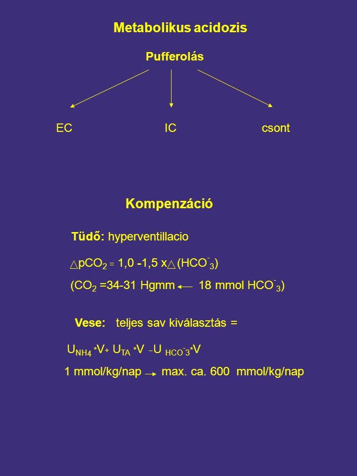 Metabolikus acidozis Pufferolás ECICcsont Kompenzáció Tüdő:hyperventillacio pCO 2 = 1,0 -1,5 x (HCO - 3 ) (CO 2 =34-31 Hgmm 18 mmol HCO - 3 ) Vese:teljes sav kiválasztás = U NH 4 * V + U TA * V U HCO - 3 * V 1 mmol/kg/nap max.