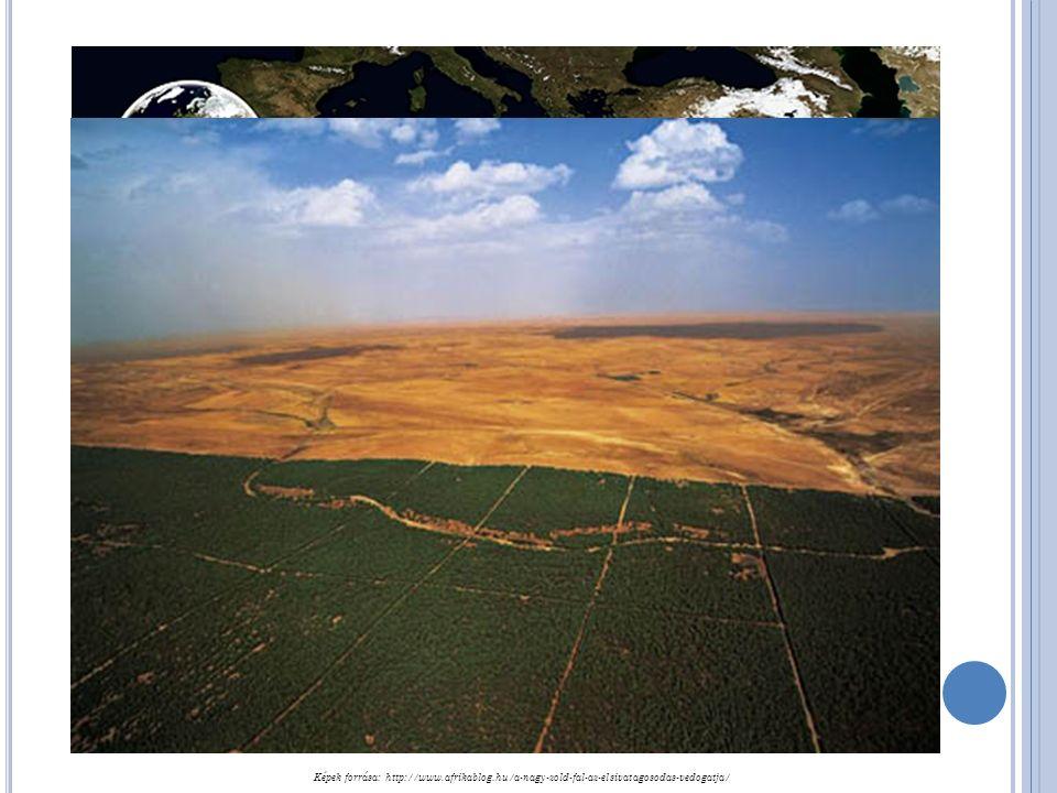 Képek forrása: http://www.afrikablog.hu/a-nagy-zold-fal-az-elsivatagosodas-vedogatja/