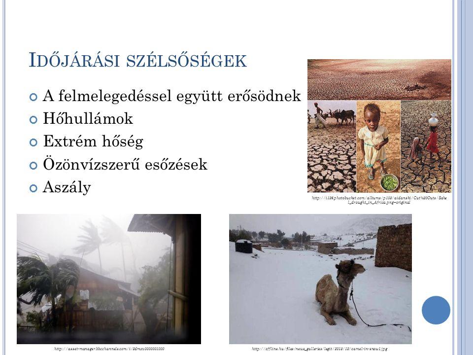I DŐJÁRÁSI SZÉLSŐSÉGEK A felmelegedéssel együtt erősödnek Hőhullámok Extrém hőség Özönvízszerű esőzések Aszály http://i126.photobucket.com/albums/p103/aidanski/Cut%20Outs/Sahe l_drought_in_Africa.png~original http://asset-manager.bbcchannels.com/i/2dmxv0000001000http://offline.hu/files/news_galleries/legit/2013/12/camel-in-snow1.jpg