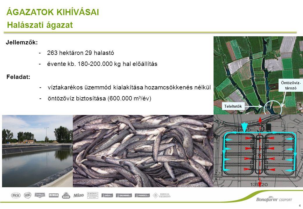 4 ÁGAZATOK KIHÍVÁSAI Teleltetők Öntözővíz- tározó Halászati ágazat Jellemzők: -263 hektáron 29 halastó -évente kb.