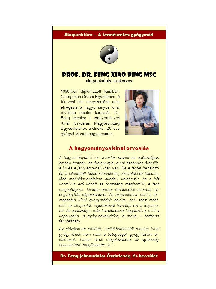 1990-ben diplomázott Kínában, Changchun Orvosi Egyetemén. A főorvosi cím megszerzése után elvégezte a hagyományos kínai orvoslás mester kurzusát. Dr.