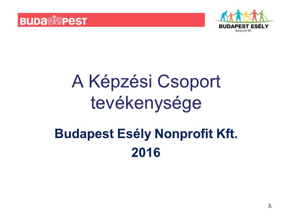 A Képzési Csoport tevékenysége Budapest Esély Nonprofit Kft. 2016