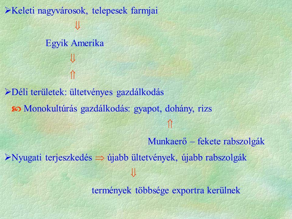  Keleti nagyvárosok, telepesek farmjai  Egyik Amerika    Déli területek: ültetvényes gazdálkodás  Monokultúrás gazdálkodás: gyapot, dohány, rizs  Munkaerő – fekete rabszolgák  Nyugati terjeszkedés  újabb ültetvények, újabb rabszolgák  termények többsége exportra kerülnek