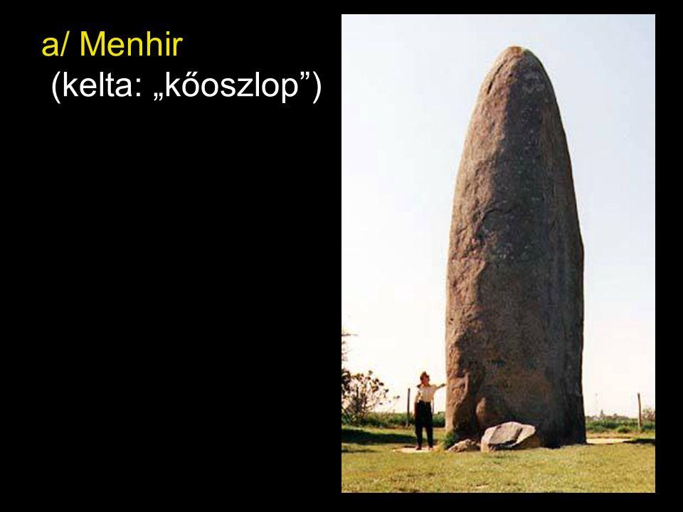 """a/ Menhir (kelta: """"kőoszlop"""")"""