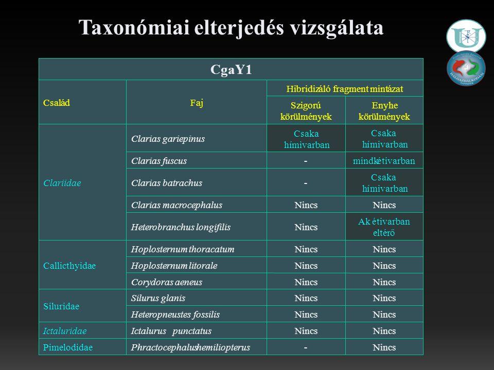 Taxonómiai elterjedés vizsgálata