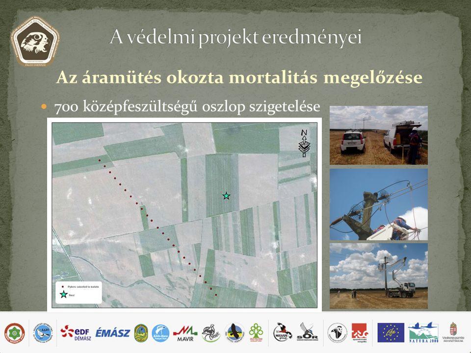 700 középfeszültségű oszlop szigetelése Az áramütés okozta mortalitás megelőzése