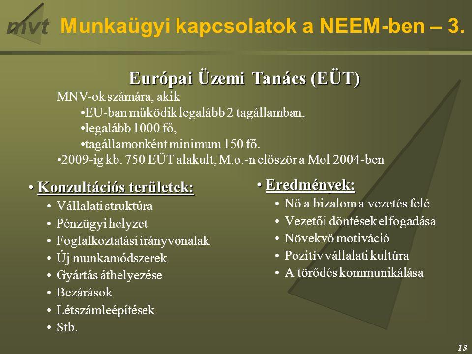 mvt Munkaügyi kapcsolatok a NEEM-ben – 3. Konzultációs területek:Konzultációs területek: Vállalati struktúra Pénzügyi helyzet Foglalkoztatási irányvon