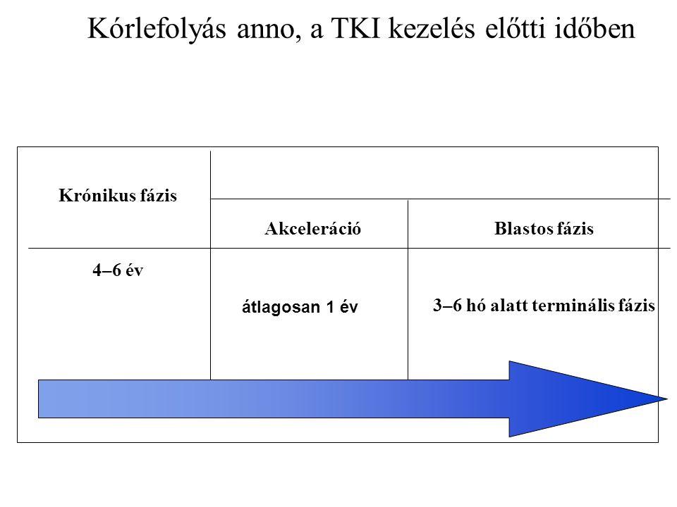 Kórlefolyás anno, a TKI kezelés előtti időben Krónikus fázis 4–6 év AkcelerációBlastos fázis 3–6 hó alatt terminális fázis átlagosan 1 év