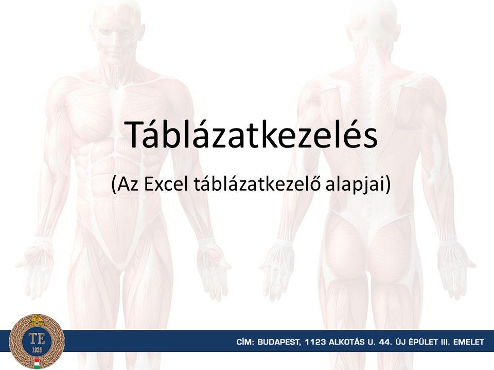 Táblázatkezelés (Az Excel táblázatkezelő alapjai)