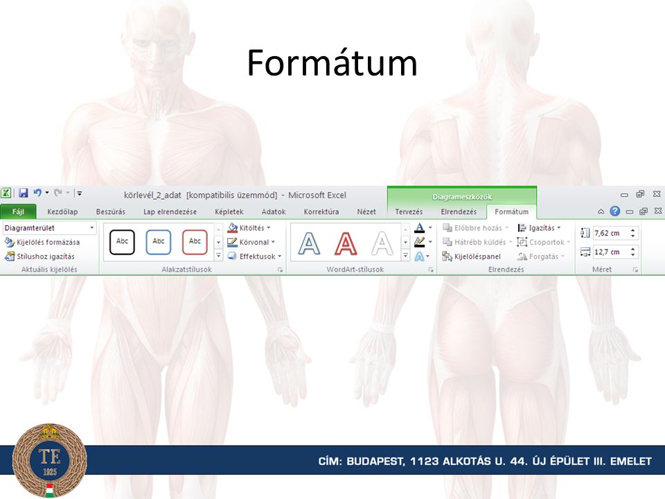 Formátum