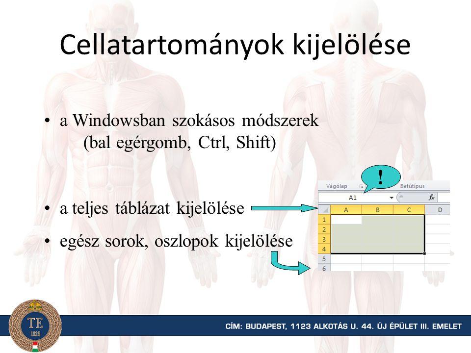 Cellatartományok kijelölése a Windowsban szokásos módszerek (bal egérgomb, Ctrl, Shift) a teljes táblázat kijelölése egész sorok, oszlopok kijelölése