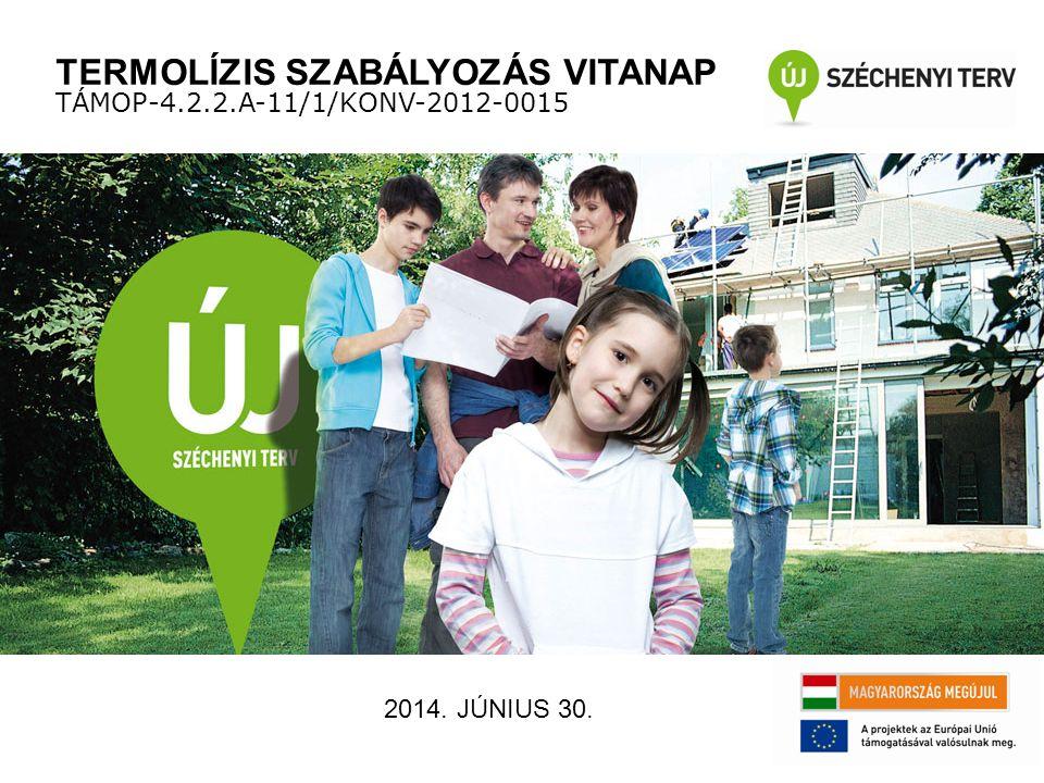 TERMOLÍZIS SZABÁLYOZÁS VITANAP TÁMOP-4.2.2.A-11/1/KONV-2012-0015 2014. JÚNIUS 30.
