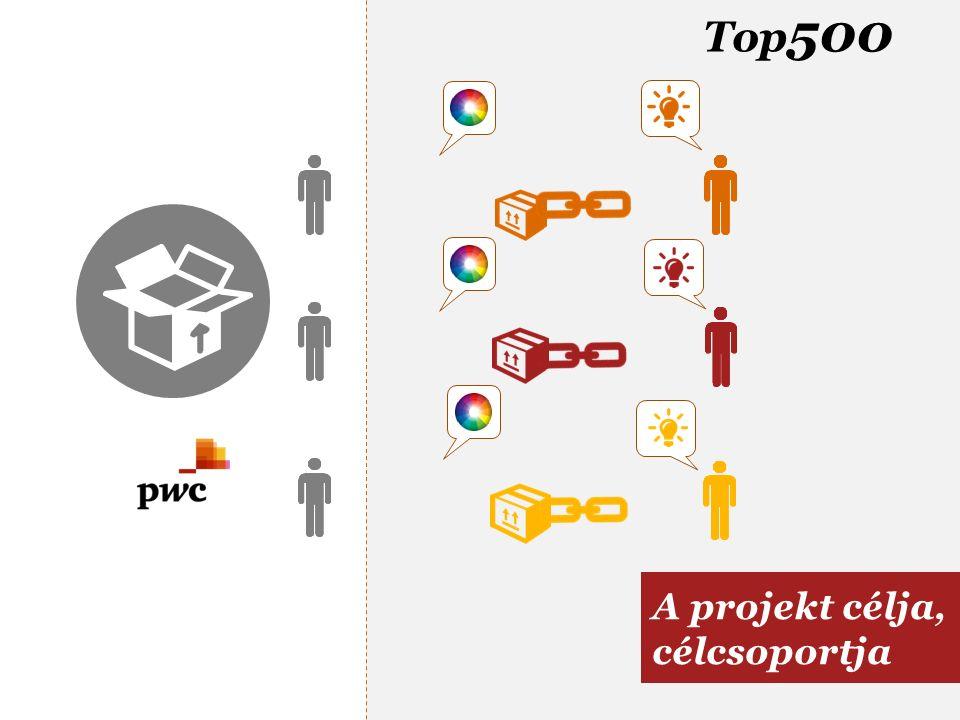 Top 500 A projekt célja, célcsoportja