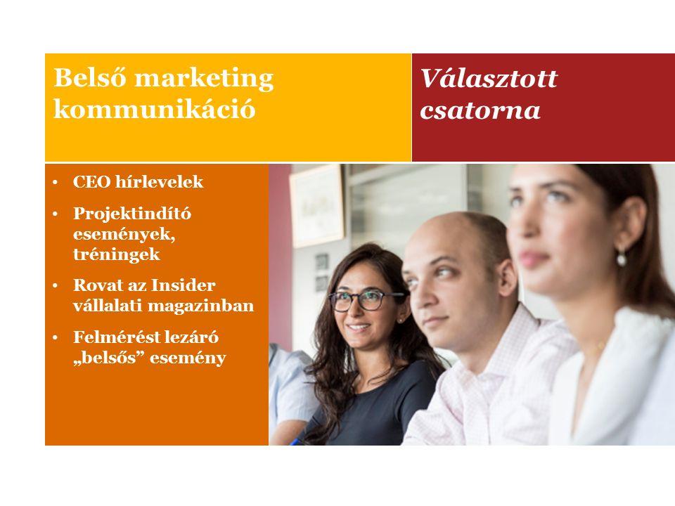 Választott csatorna Microsite Külső marketing kommunikáció Online