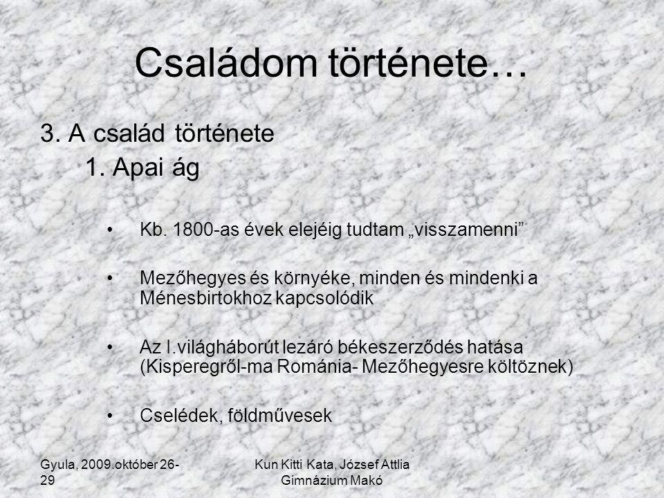 Gyula, 2009.október 26- 29 Kun Kitti Kata, József Attlia Gimnázium Makó Családom története… 3.