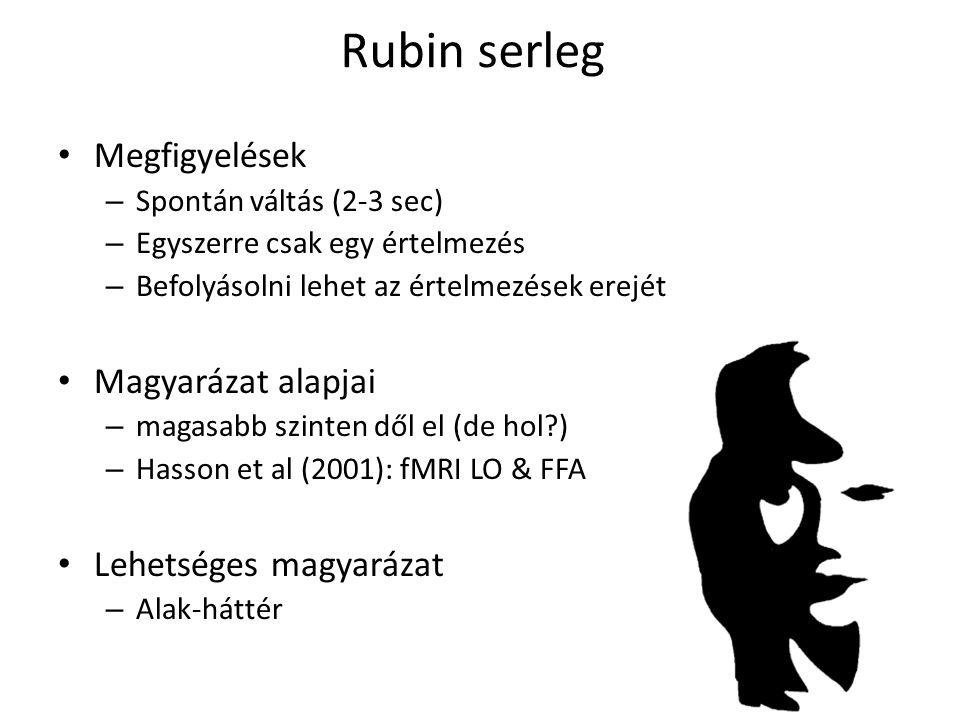 Rubin serleg Megfigyelések – Spontán váltás (2-3 sec) – Egyszerre csak egy értelmezés – Befolyásolni lehet az értelmezések erejét Magyarázat alapjai –