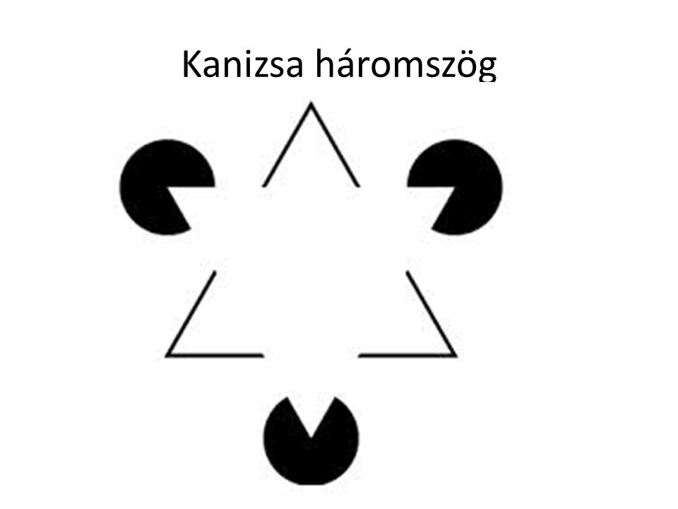 Kanizsa háromszög Photo by Gerard Lemmo National Geographic World, 1997 October