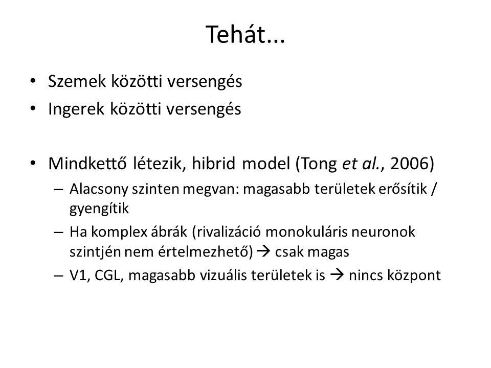 Tehát... Szemek közötti versengés Ingerek közötti versengés Mindkettő létezik, hibrid model (Tong et al., 2006) – Alacsony szinten megvan: magasabb te