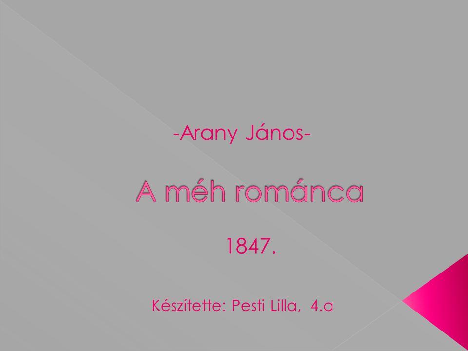 -Arany János- Készítette: Pesti Lilla, 4.a 1847.