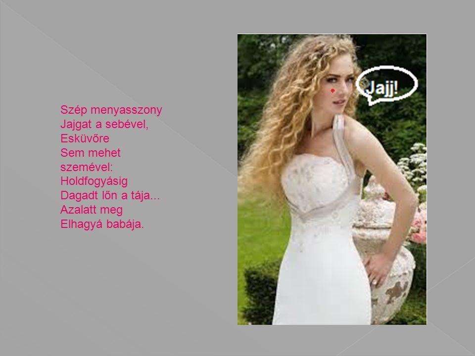 Szép menyasszony Jajgat a sebével, Esküvőre Sem mehet szemével: Holdfogyásig Dagadt lőn a tája...