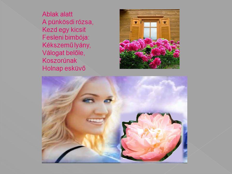 Ablak alatt A pünkösdi rózsa, Kezd egy kicsit Fesleni bimbója: Kékszemű lyány, Válogat belőle, Koszorúnak Holnap esküvő