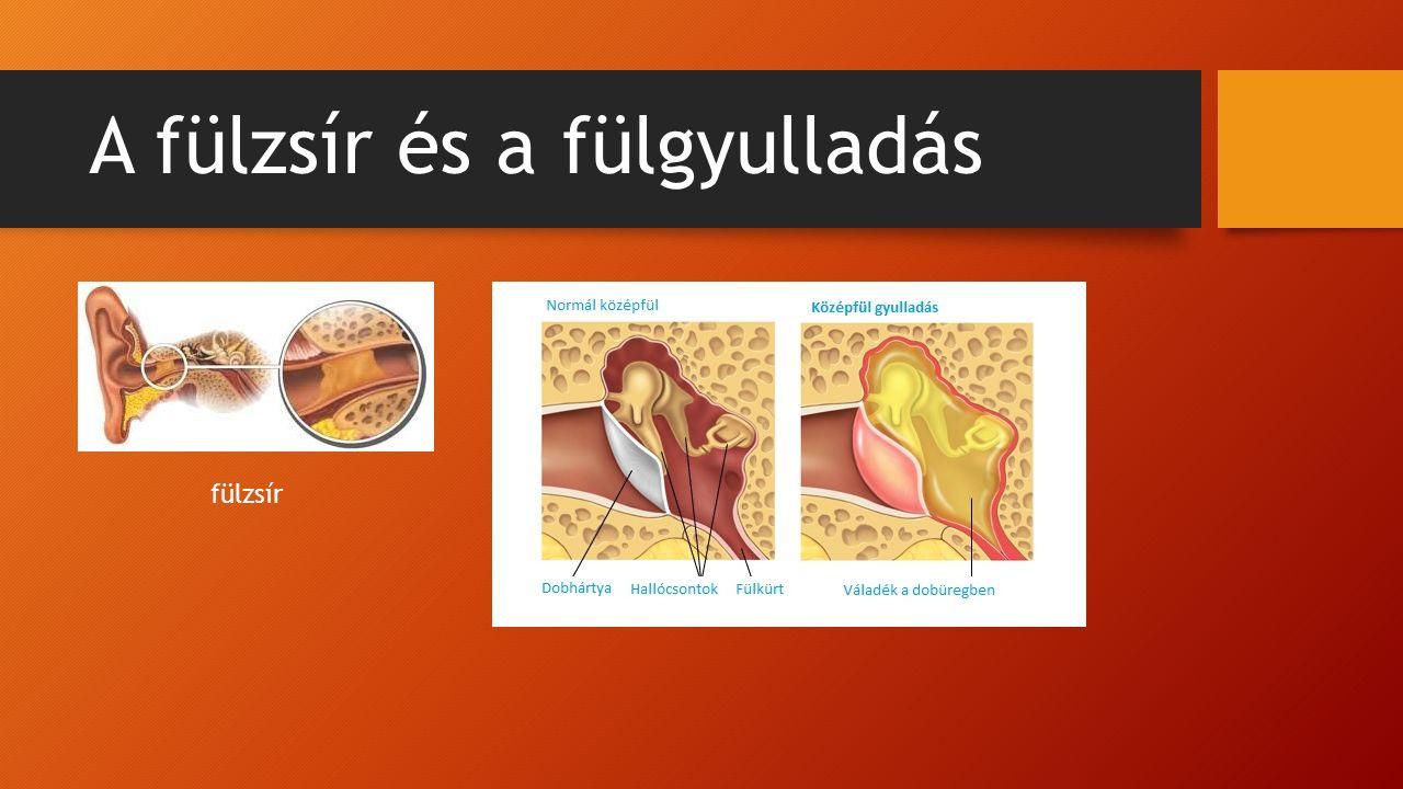 A fülzsír és a fülgyulladás fülzsír