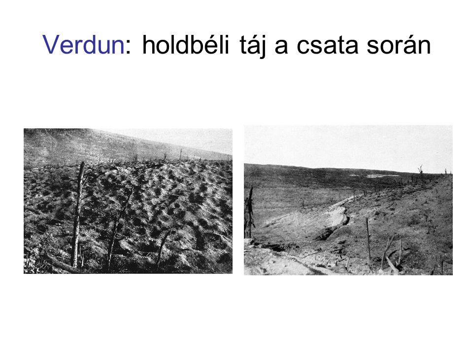 Verdun: holdbéli táj a csata során