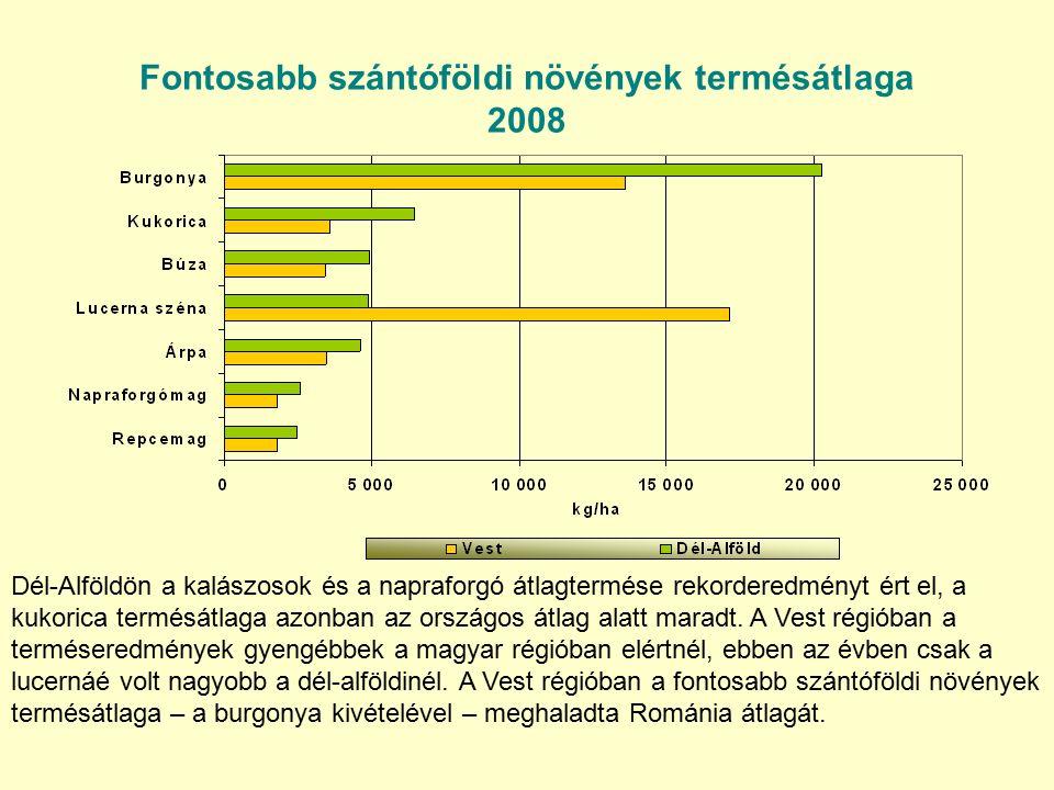Fontosabb szántóföldi növények termésátlaga 2008 Dél-Alföldön a kalászosok és a napraforgó átlagtermése rekorderedményt ért el, a kukorica termésátlaga azonban az országos átlag alatt maradt.